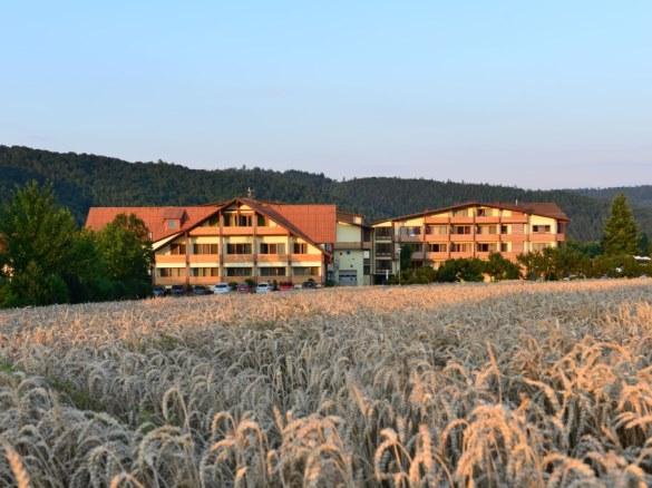 Frankenberg Hotels Pensionen