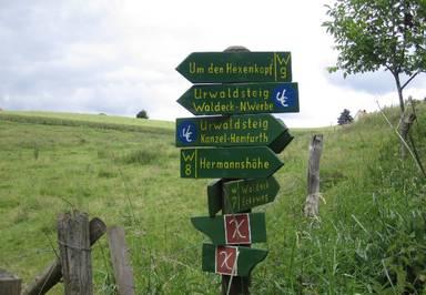 Beste Spielothek in Rehbach finden